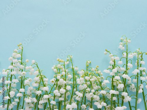 Poster Muguet de mai Romantic gentle flower background, lily of the valley on a blue background, top view, flat layout.