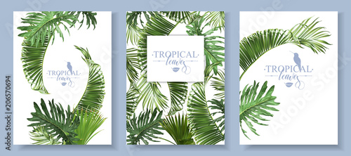 Foto  Tropical leaves banners set