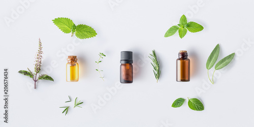 Poster Condiments Bottle of essential oil with fresh herbal sage, rosemary, oregano, thyme, lemon balm spearmint and peppermint setup with flat lay on white background