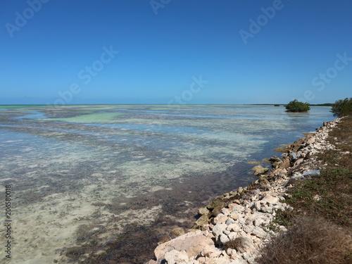 Spoed Foto op Canvas Noordzee Lagune mit Mangriven auf Kuba, Cayo Coco, Jardines Del Rey