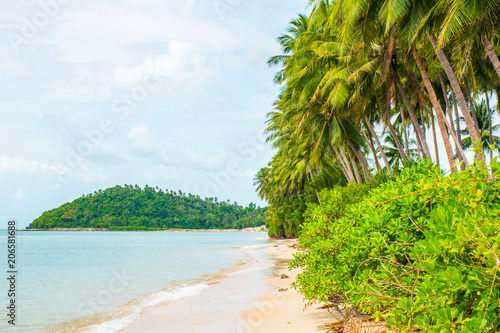 Spoed Foto op Canvas Natuur Tropical beach Lipa Noi with palms in the Koh Samui Island in Thailand