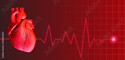 Valokuva Human heart with heart rate pulse illustration