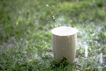Coffee Cup In Raining