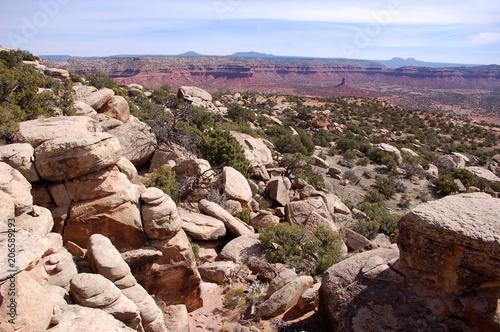 Tuinposter Zalm Boulder strewn redrock clifflside in the Bears Ears wilderness of the Southern Utah desert