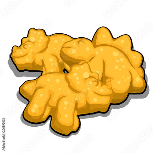 Cookies in the shape of dinosaurs isolated on white background Canvas Print