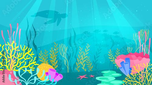 Photo  underwater background with sea flora