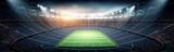 Fototapeta Fototapety sport - The stadium