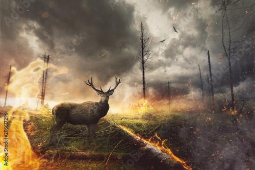 Foto auf Gartenposter Hirsch Hirsch steht in brennendem Wald