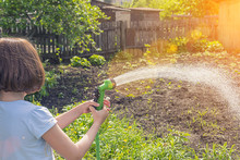 Girl Watering A Garden From A ...