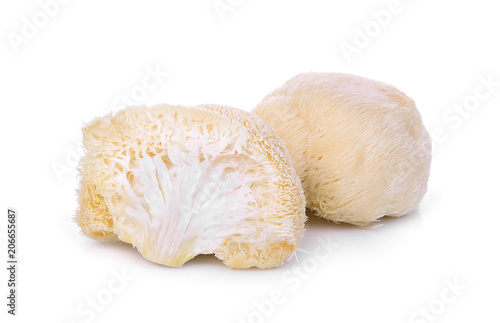 Fotomural mushroom mokey head, lion mane or yamabushitake isolated on white background