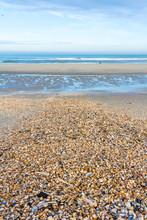 Sunny Deserted Beach Covered I...