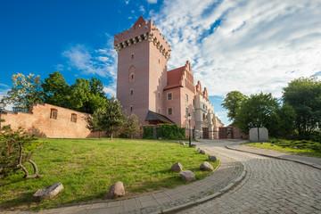 Royal Castle in Poznan