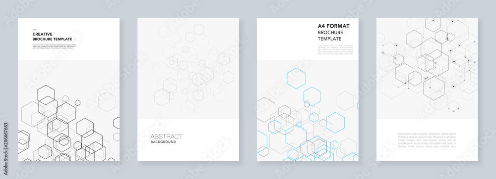 Fototapety, obrazy: Minimal brochure templates with hexagons and lines on white. Hexagon infographic. Digital technology, science or medical concept.Templates for flyer, leaflet, brochure, report, presentation.