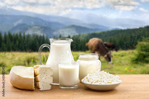 Fototapeta Milk, sour cream, cheese and cottage cheese on wooden table on background of meadow with cows in the mountains. obraz