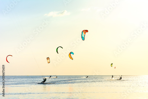 Kite-surfing and a lot of silhouettes of kites in the sky. Holidays on nature. Artistic picture. Beauty world.