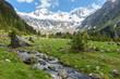 alpine Landschaft mit Wildbach und Gletscher im Hintergrund