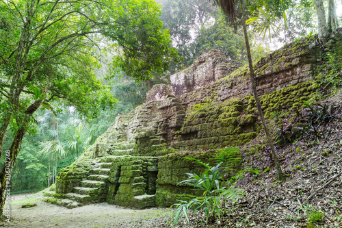 Poster Ruine Tikal