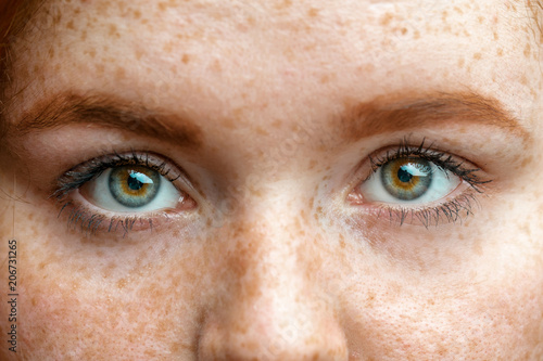 Fototapety, obrazy: Close up eyes of young red ginger freckled woman with perfect healthy freckled skin, looking at camera. Ophthalmology, Vision care