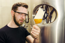 Man In Beer Production In Distillery Checking Quality Control Of Craft Beer (wheat Beer)