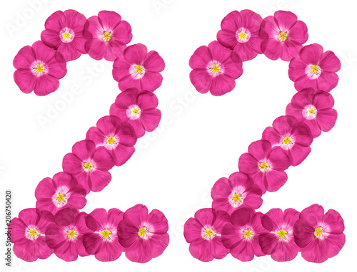 Poster  Arabic numeral 22, twenty two, from pink flowers of flax, isolated on white back