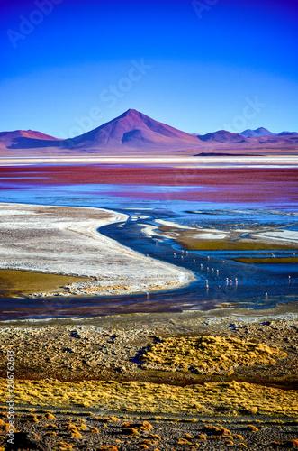Laguna Colorada de Uyuni, Reserva Eduardo Avaroa, Bolivia Wallpaper Mural