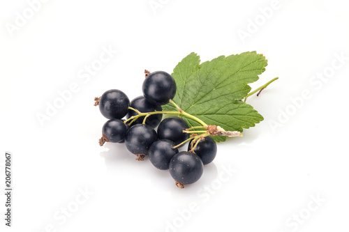 Photo Blackcurrant in closeup isolated on white background.