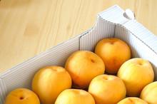 Box Of Fresh, Organic, Apricots