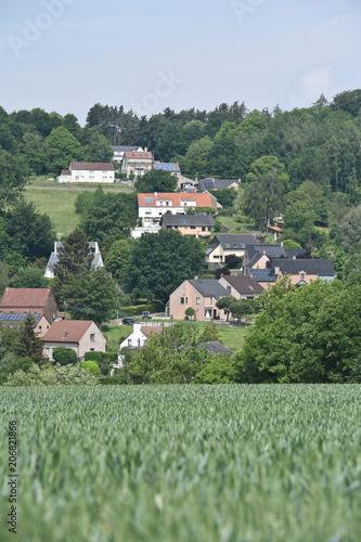 In de dag Olijf immobilier quartier maison logement bois vert campagne Ittre hypothecaire pret emprunt