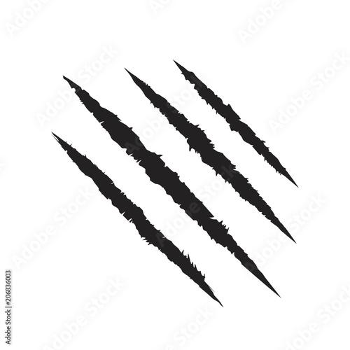 Obraz na płótnie Scratch claws of animal