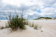Wild Dunes at Pensacola Beach National Seashore