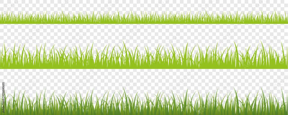 Fototapety, obrazy: grüne wiese hintergrund 3er Set