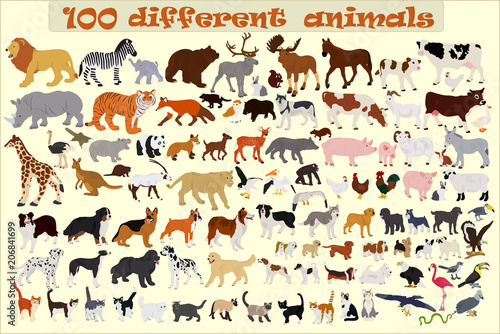 Collection of different vector animals on a light background