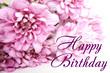 "pale pink chrysanthemum close-up, the inscription ""Happy Birthday""."
