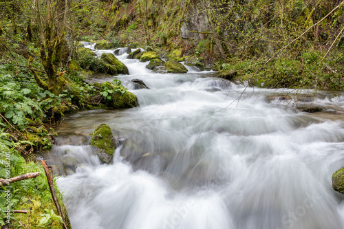Aluminium Prints Forest river Torrent of water from the Naviego River in the Leitariegos Valley, Asturias, Spain.