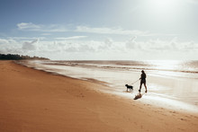 Woman Walking With Dog On Beach At Sunrise