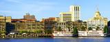 Fototapeta Sawanna - Panoramic view of Savannah, Georgia, USA