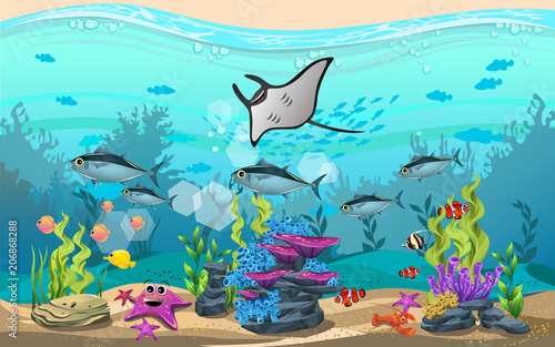 the beauty of the sea. there are fish and corals.