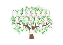 Family Tree And Nameplate. Vec...