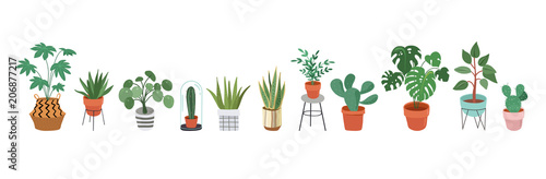 Stampa su Tela Urban jungle, trendy home decor with plants, planters, cacti, tropical leaves