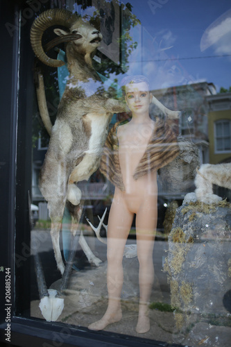 Valokuvatapetti Nude Naked Antique Mannequin in a Window Wearing a Fur Stole Coat Shrug Oddities