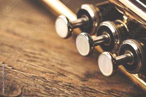 Slika na platnu Part of a trumpet on wood