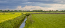 Panorama Of Dutch Agricultural...