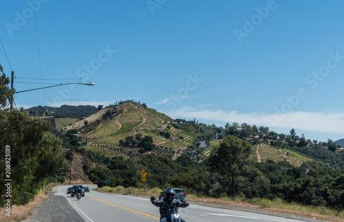 Fotografie, Obraz  Boutique winery vista in Malibu, California
