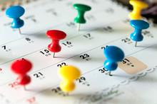 Various Color Thumb Tack Pins ...