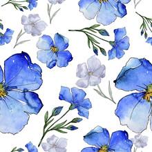 Blue Flax. Floral Botanical Fl...
