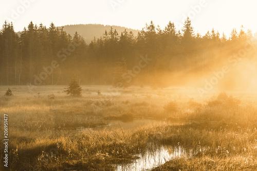 Sonnenaufgang und Nebel am Fichtelsee im Fichtelgebirge