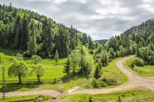 Foto op Canvas Beige green summer forest mountain landscape somewhere on country side