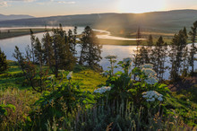 The Yellowstone River Meandering Peacefully Through Hayden Valley On An Early Morning In Yellowstone National Park