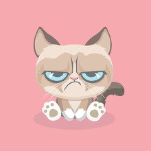 Cute Grumpy Cat. Vector Illust...