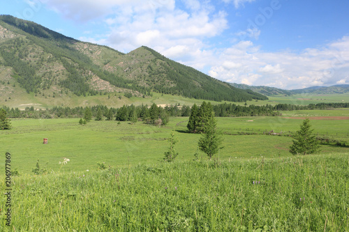 Foto op Plexiglas Pistache View of the mountain village of Elo, Ongudaysky district, Altai, Russia